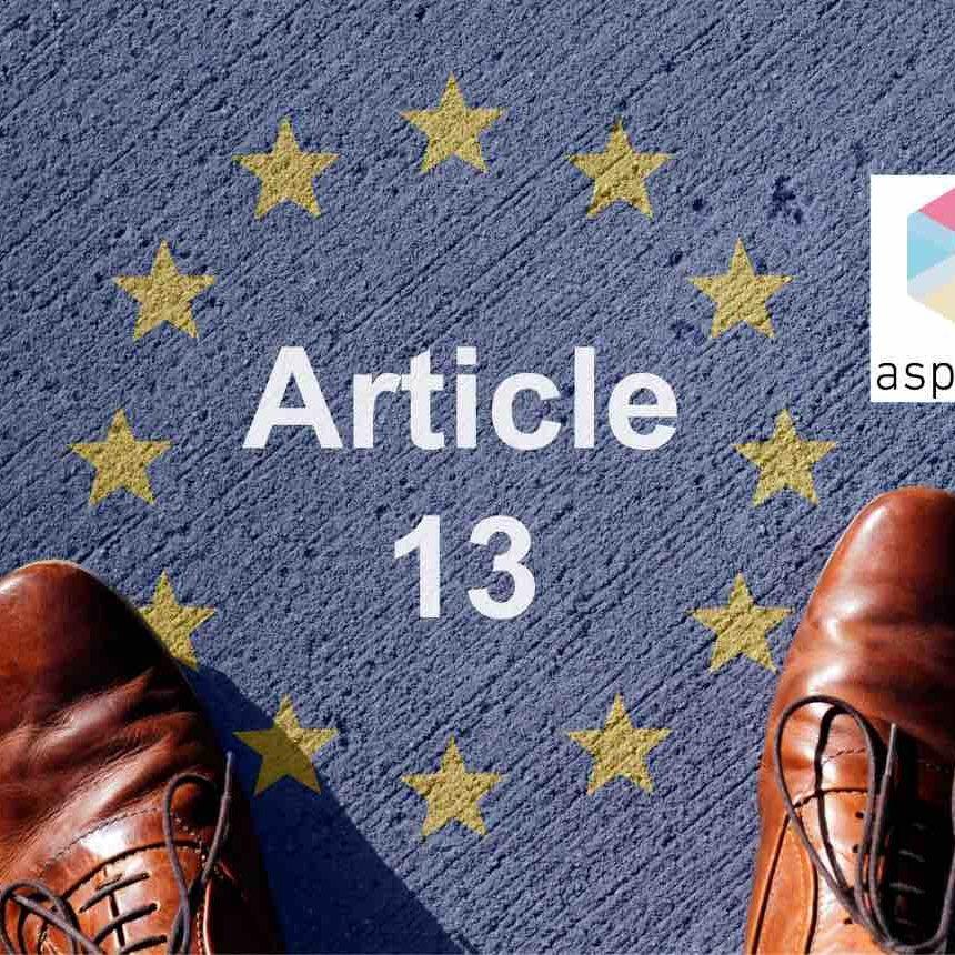 Alexander Voss Artikel 13